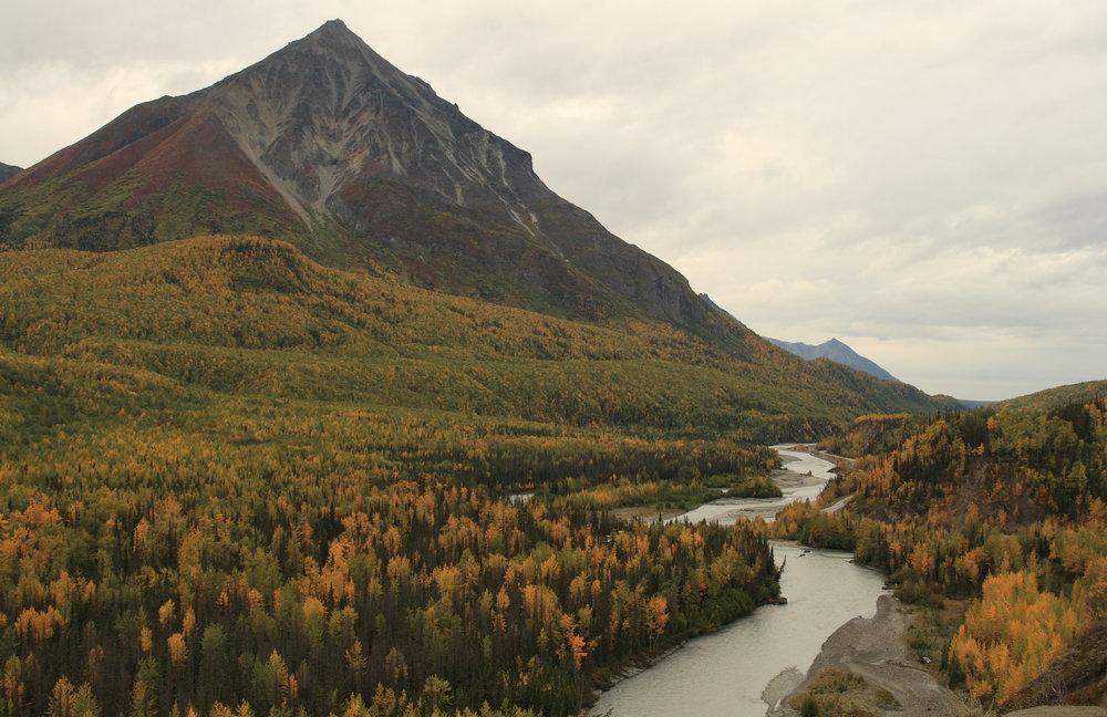 Alaska Fall Foliage