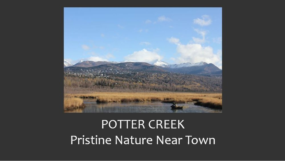 Potter Creek