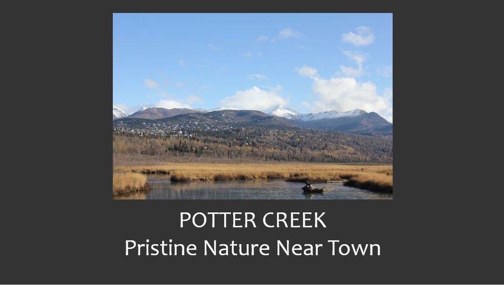 Potter Creek