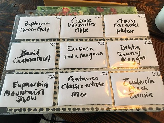 Seed kits for tonight's workshop are prepped! There are a few spots left to join us at @urbangardenerto from 7-9. Tickets done through the shop.