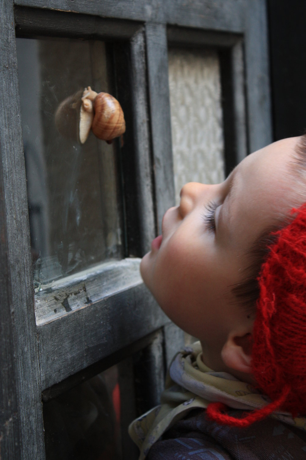 Little Snail3.JPG