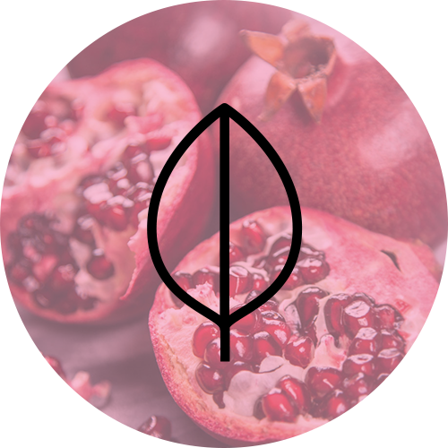 Pomegranate-Scent-Diffusion-500px.png