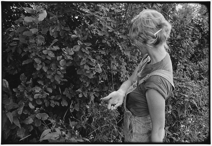 T1_016_pk016 80 BW8.5 0003_phyllis drum scans pt1_offering chookcherries.jpg
