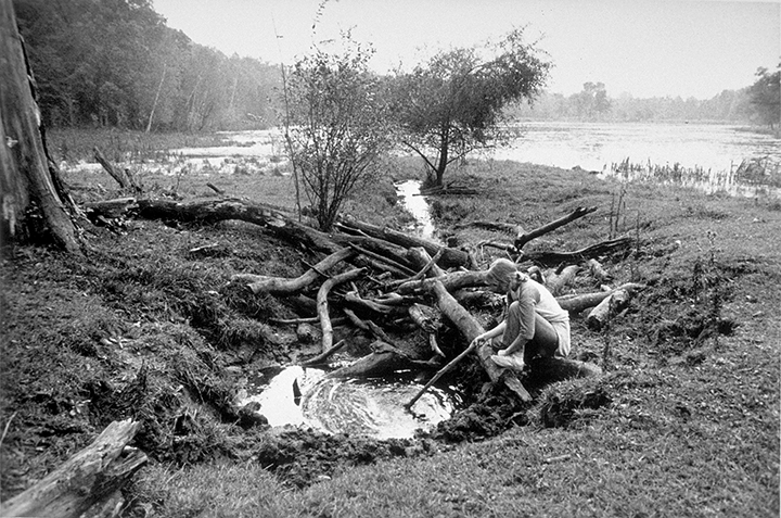 T1_030_pk028 83 CC1.72 0002_4.5 FINAL_  4.5 tif files FINALS rts_3258.21.jpg
