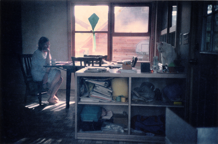 T1_109_pk127 94 B5.62 0004_ phyllis drum scans pt2_kite in window_ADJ.jpg