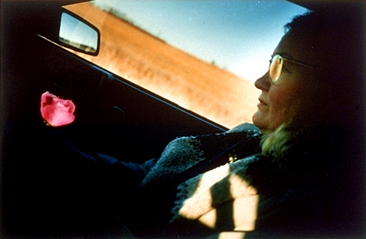 pk161.2,3 94 B6.51 0003_cd 3258 files_3258-0079_Lg_1.0_Sm_1pt.jpg