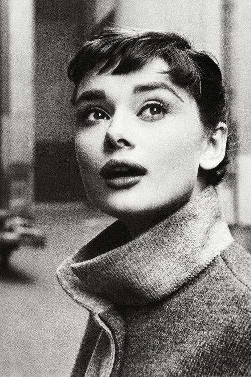 Audrey Hepburn Eyebrows Natural 75075 Usbdata