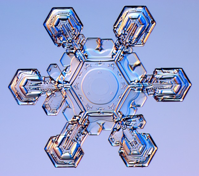 The process of partially melting and refreezing will turn this beautiful snowflake into a mean, rude ice pellet. Thanks for always crushing our dreams, nature. [Photo courtesy of snowcrystals.com, a service of CalTech)