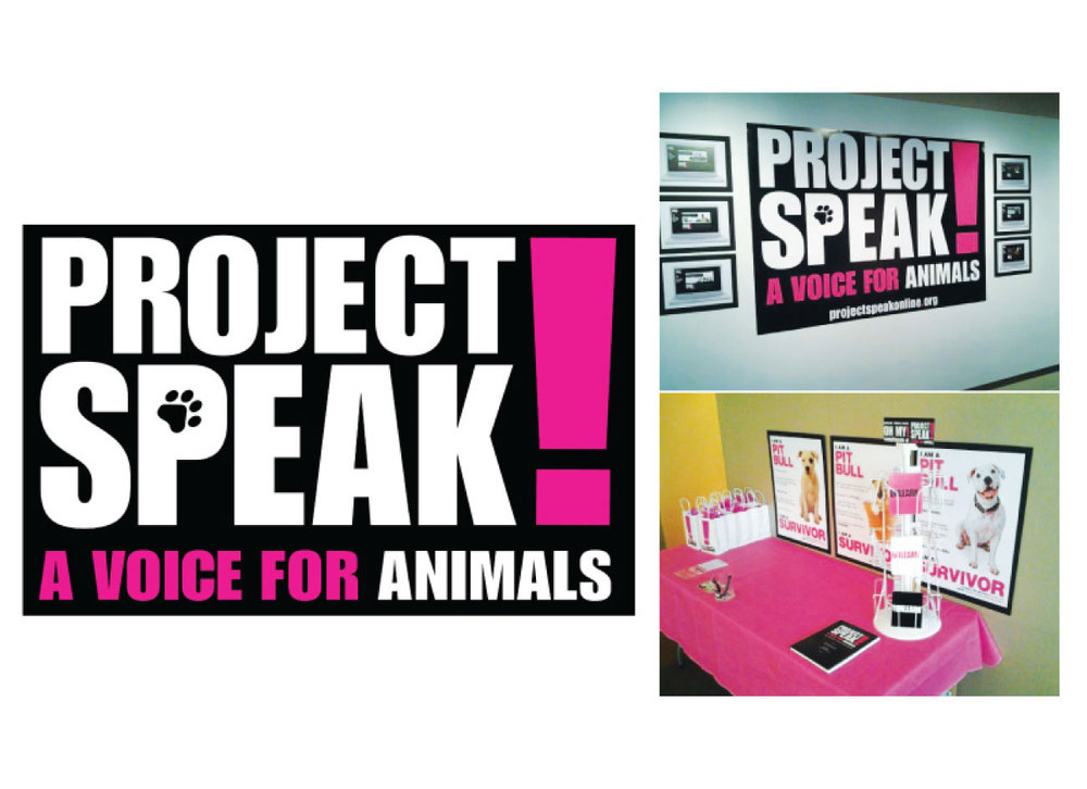 M.F.A. Thesis: Project Speak!