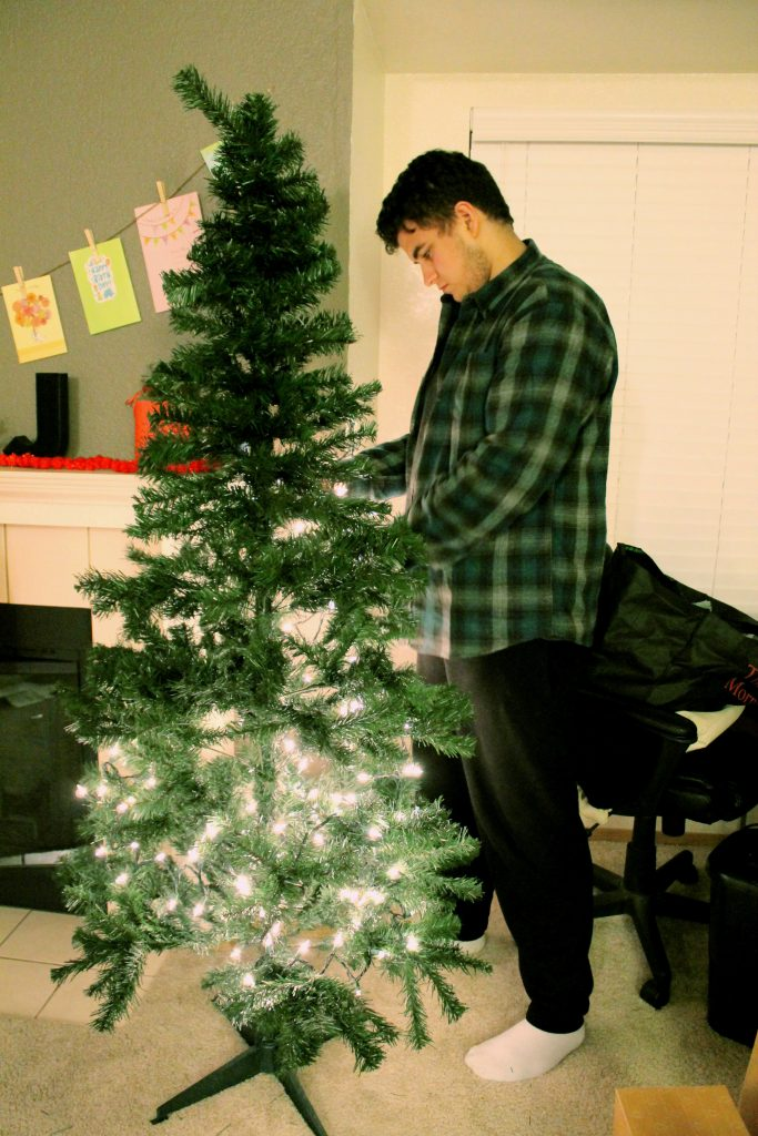 Christmas Tree 2015 with Young Man