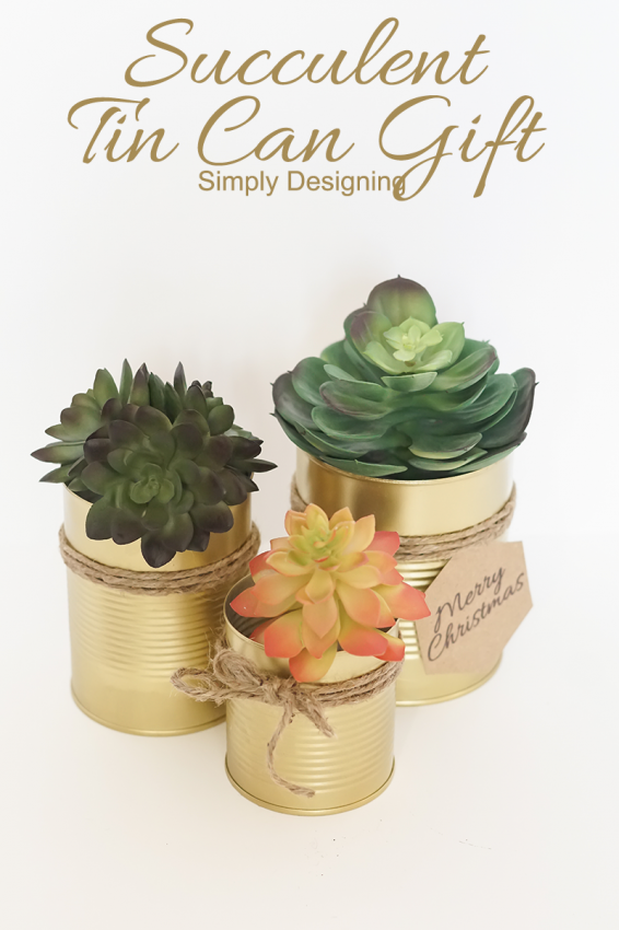 Succulent-Tin-Can-Gift
