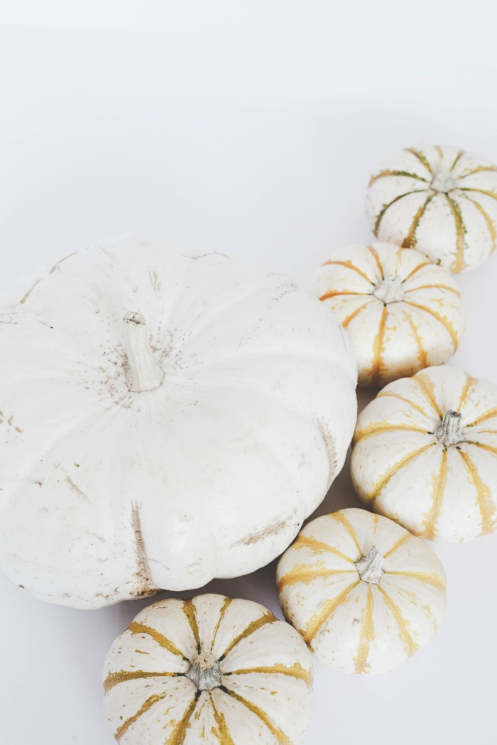 13 Great Vegetarian Thanksgiving Recipes