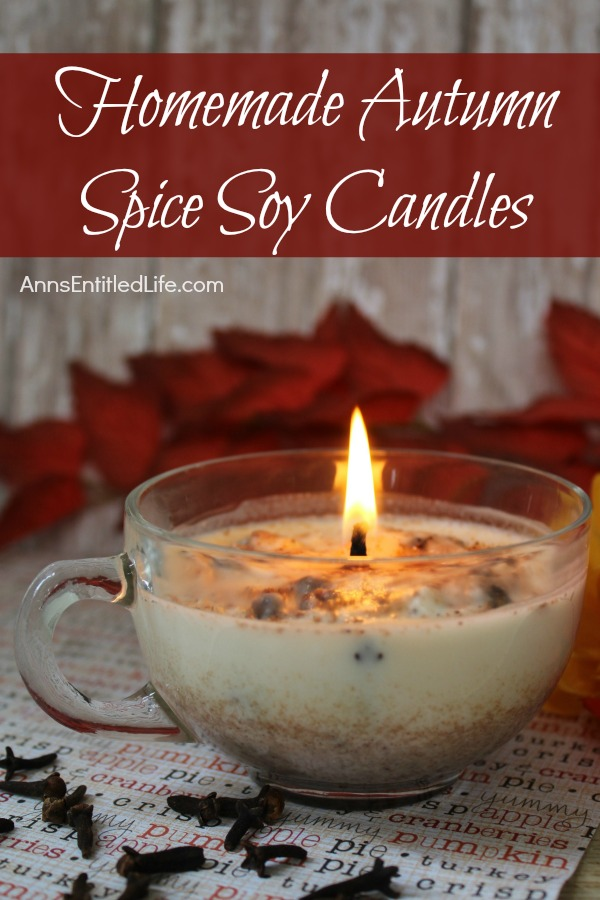 homemade-autumn-spice-candles-vertical-01.jpg