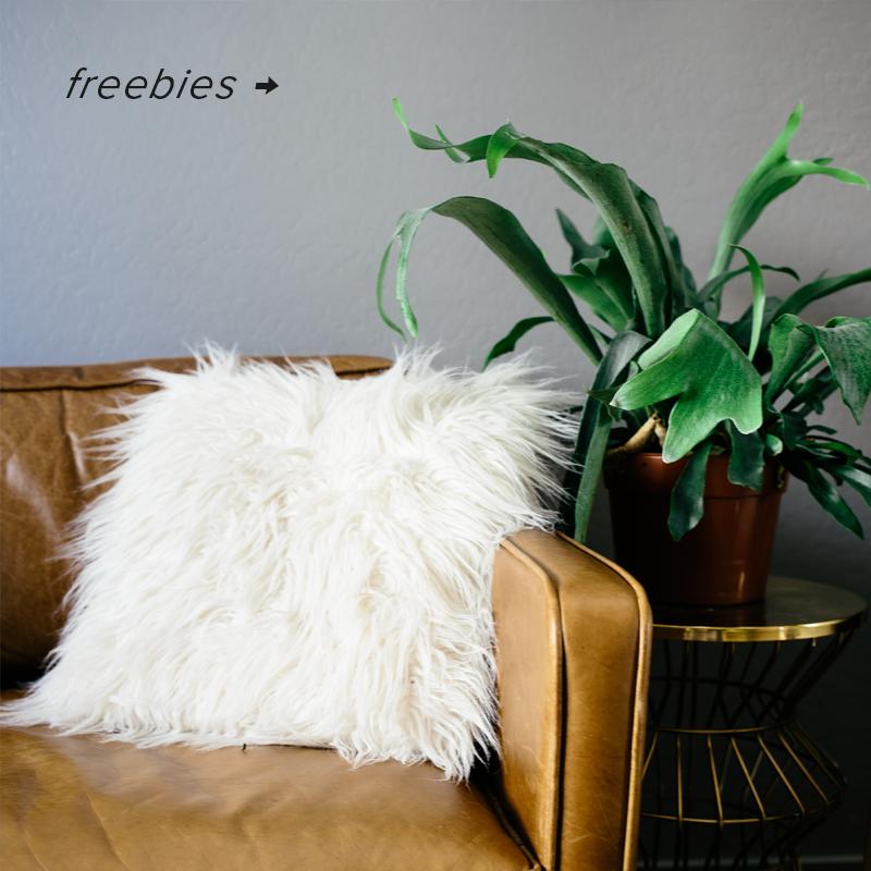 freebies.png