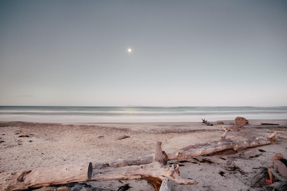 moonlight_nz_1_felicidad_de_lucas-1.jpg