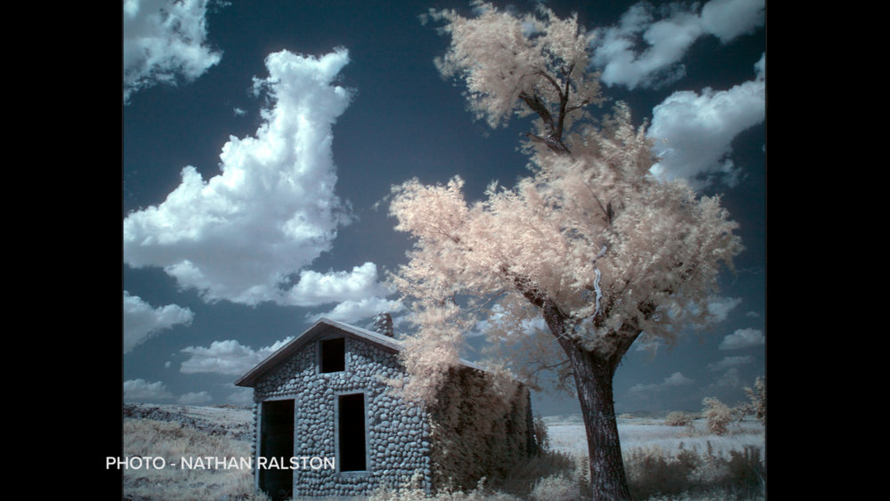 infrared-photography-nathan-ralston