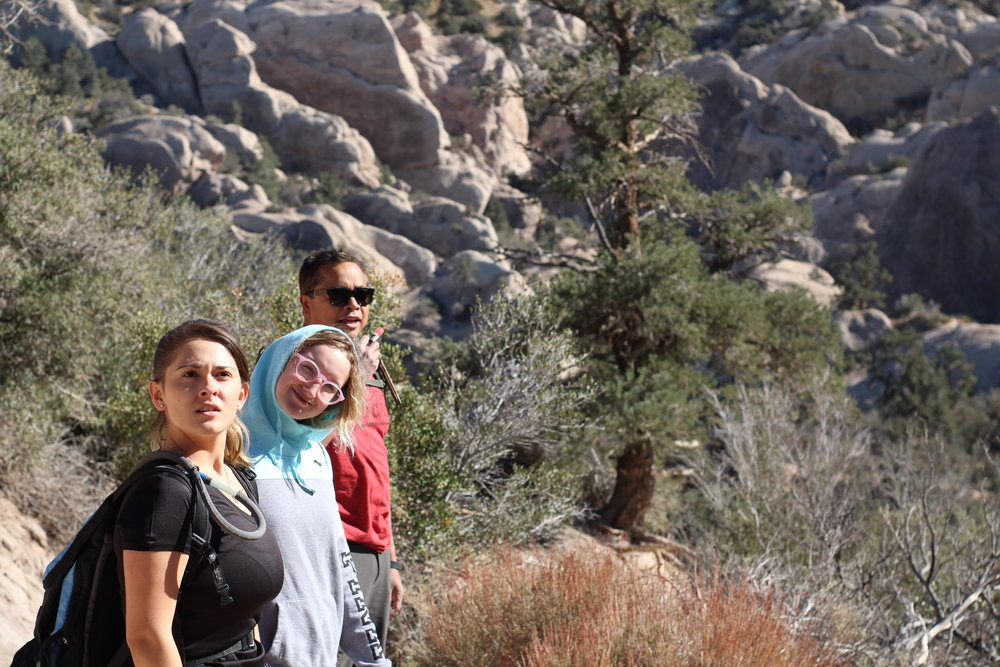 Gallery: Art + Design Department Hike to Devil's PunchBowl