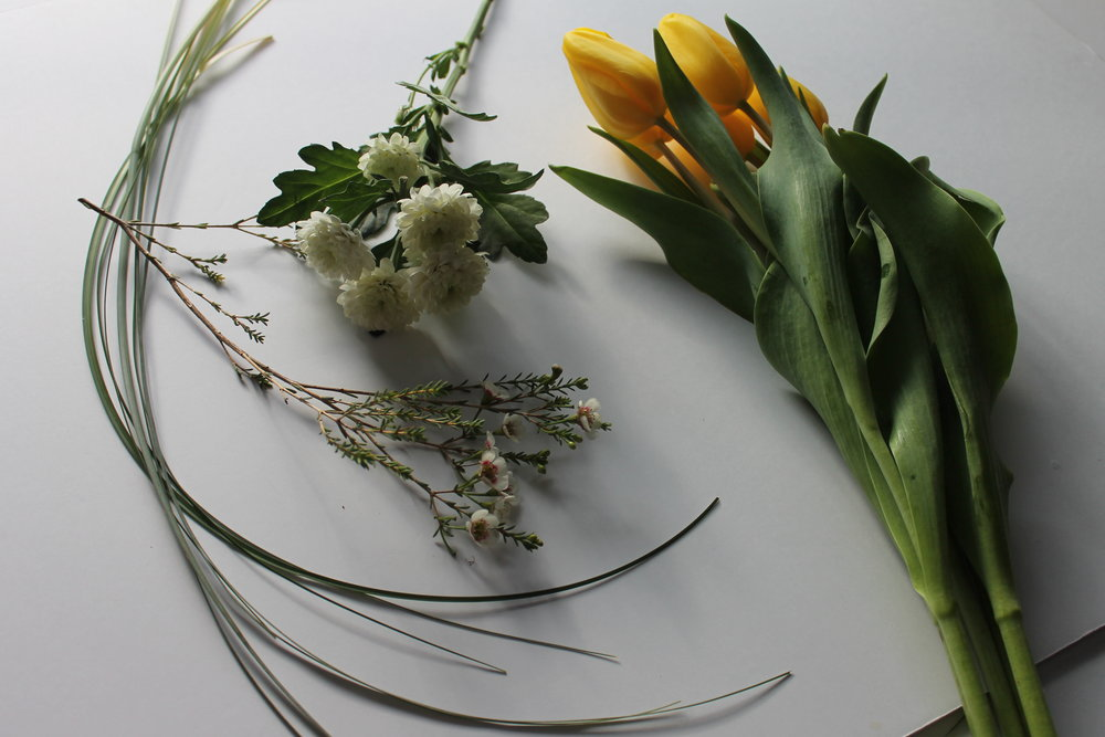tulip dance flowers image.jpg