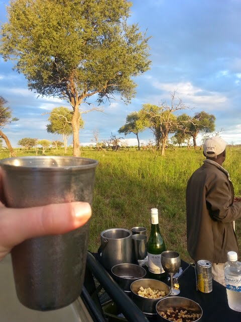 "Enjoying a ""sundowner"" and snacks with elephants in the background on our first game drive in 2015."