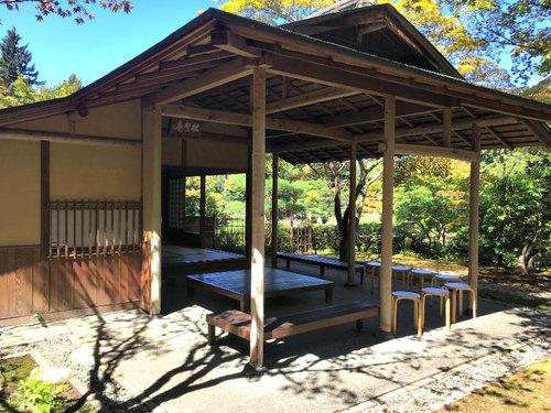Tea Ceremony Seattle Japanese Garden