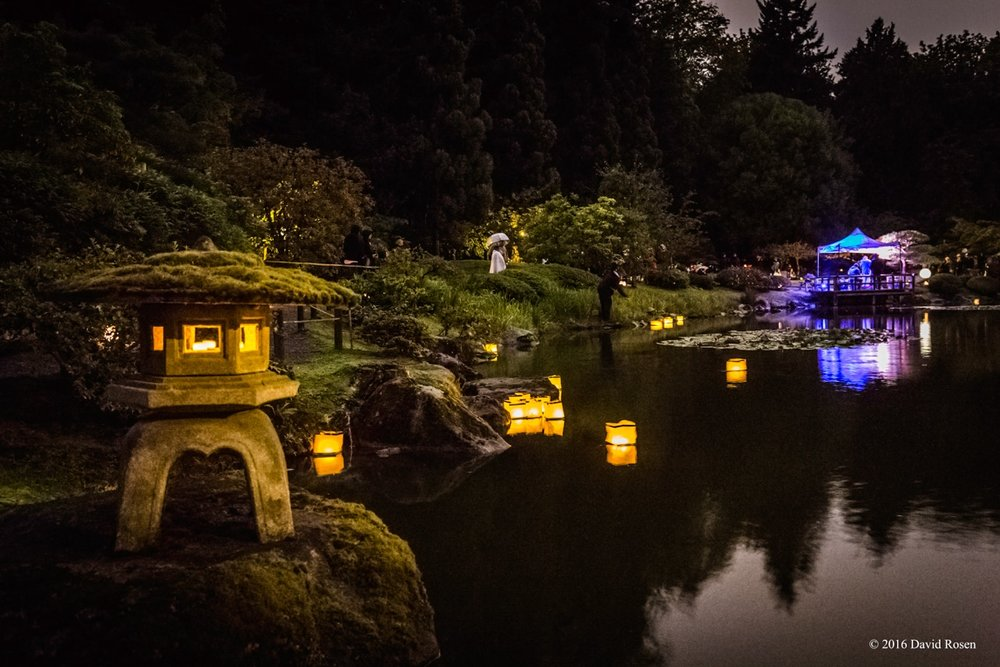 Moon Viewing 2017 Seattle Japanese Garden