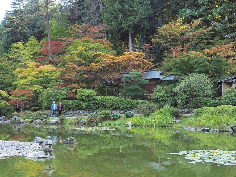 Etonnant Gardenersu0027 Talk: Autumn Colors And Japanese Maples