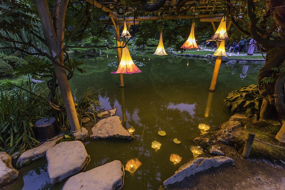 """Asagao / Morning Glory"" by Yuri Kinoshita was installed under the wisteria arbor with a help of Senior Gardener, Pete Putnicki (Photo by SlickPix Photography)"