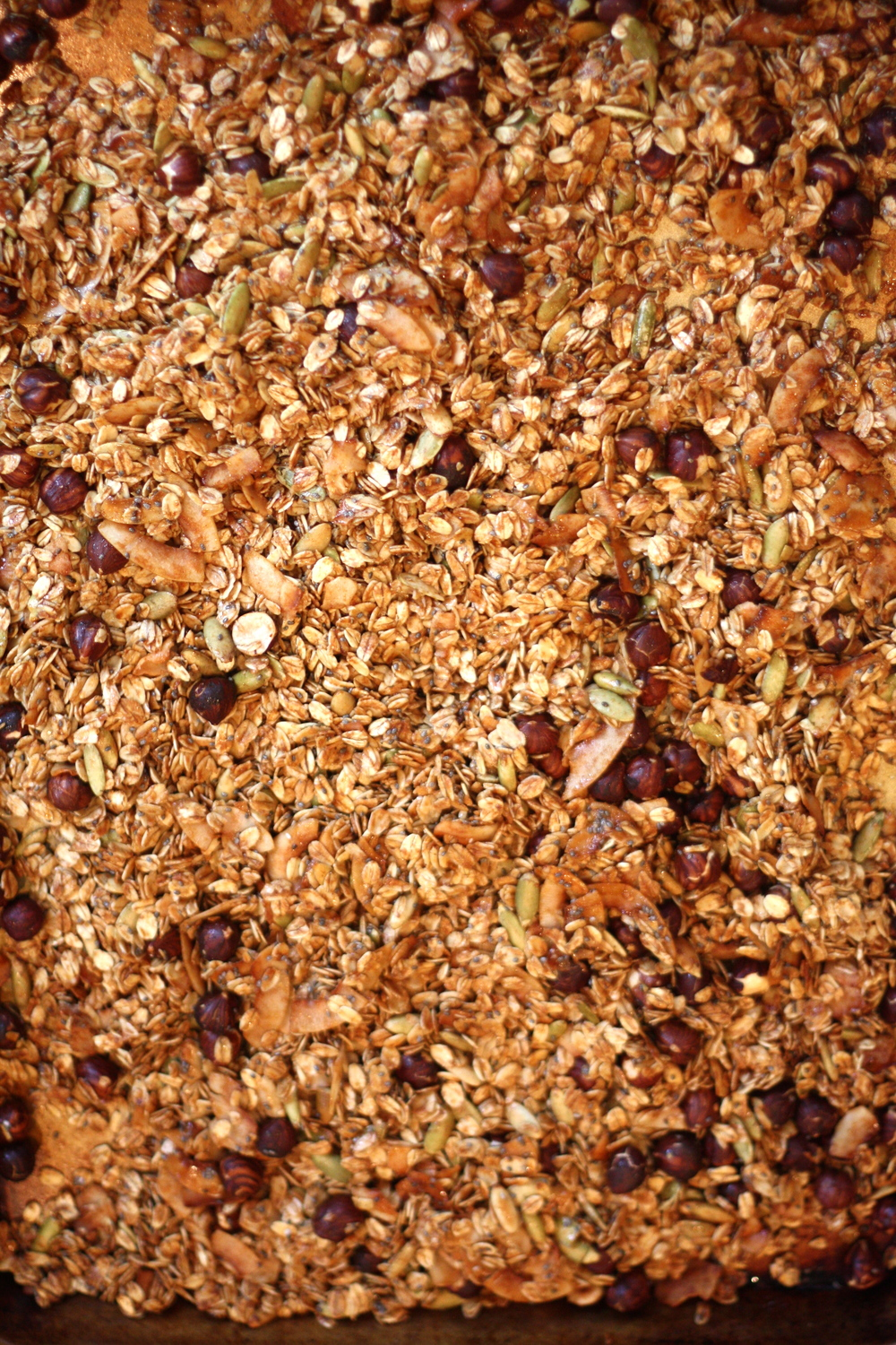 the-pig-and-the-fig-surfer's-granola