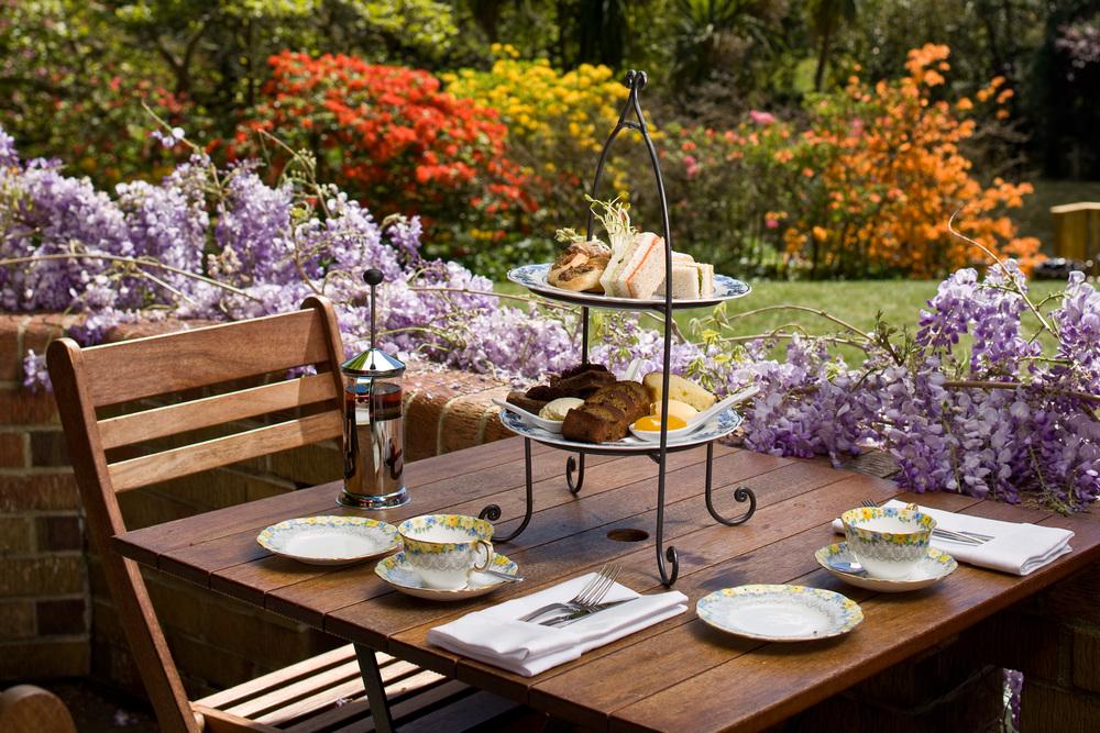 High Tea Garden Backdrop.jpg