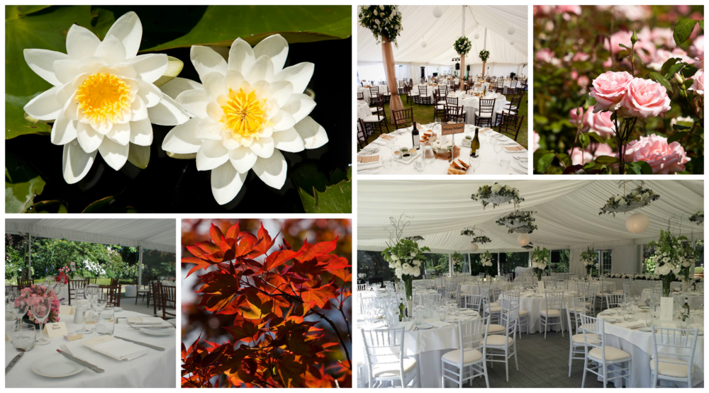 Mona Vale Gardens and Marquee Weddings