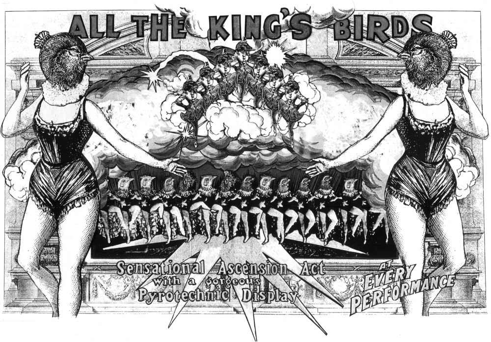 All the King's Birds