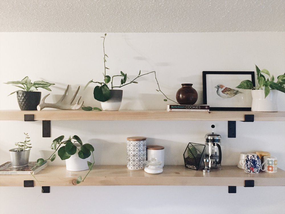 These shelves hold the only real plants we have in our home, except for the top left one which is artificial.