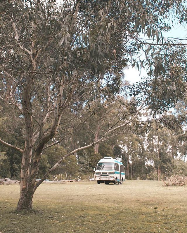 This was one of my homes in Tassie last year! ✨ . . . #magdathemagicbus #homeonwheels #vanlifeinspiration #vanlifeinspo #vanlifejournal #bohemianlifestyle #vangirlsrule #vangrrrl #ThisisVanlifeing #VanlifeMagazine #CamperLifestyle #vanlifeexplorers #vanlifeideas #tinyliving #vanlifedistrict #vangoals #vancrush  #projectvanlife #vanlifeclub #vansweetvan #vanlifecontent #homeontheroad #vanlifedreams #vanlifeideas #magicbus #glamping #itsvanlife #campvibes #buslifestyle #buslife