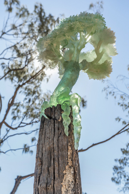 POST-TREE MUSEUM II  I  JEANETTE KROHN  I  NSW