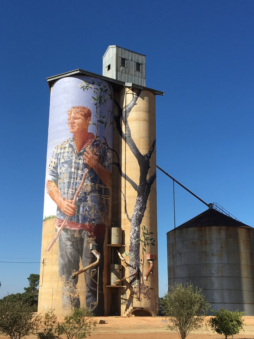 Silo Art Trail - Patchewollock Silo