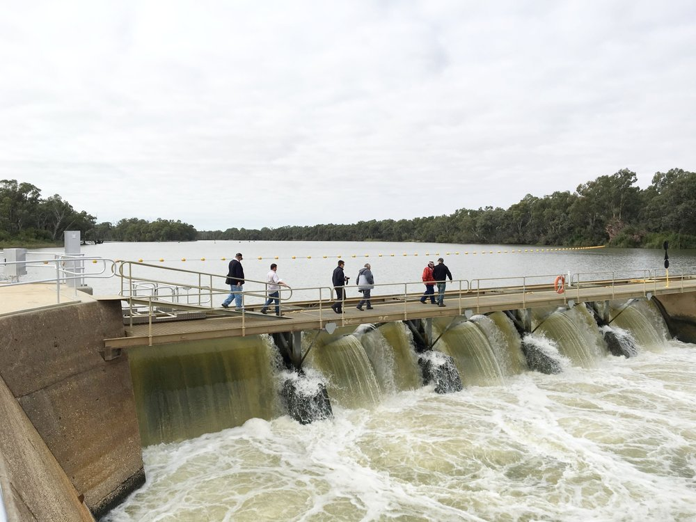 Mildura & Wentworth Tours - Both sides of the Murray Tour