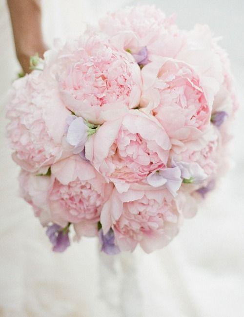 london florist, peony