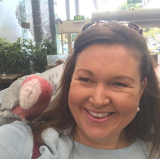 Better work stories! That time when a parrot lands on your shoulder just prior to a meeting! #theshapeofkate #gratitude #betterworkstories #forceofnaturekate