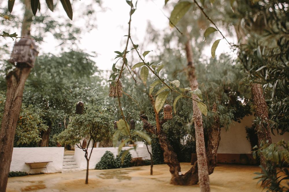 boda-sevilla-clara-javi-ernestovillalba-1727.jpg