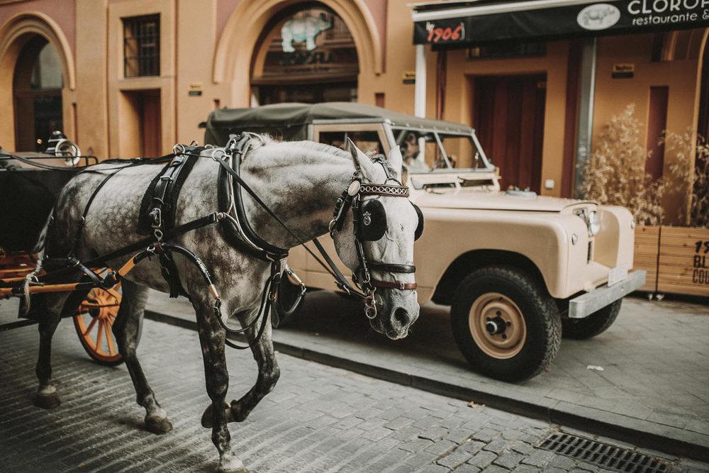 wedding-ernestovillalba-Albert-Leslie-Seville-2756-ASE.jpg