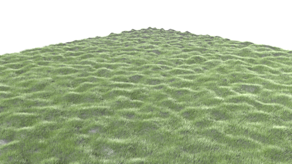 some grass using the hair emitter setting