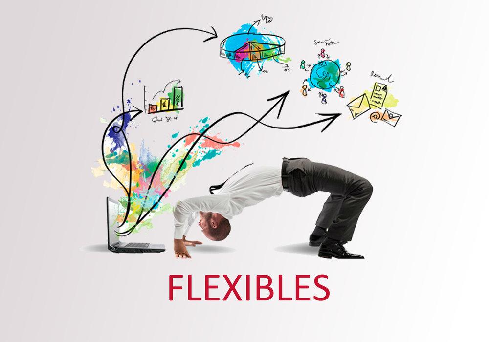 FLEXIBLE 1.jpg