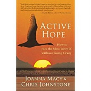 Our Book:  Active Hope