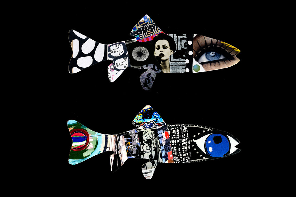 fishes_30506077142_o.jpg