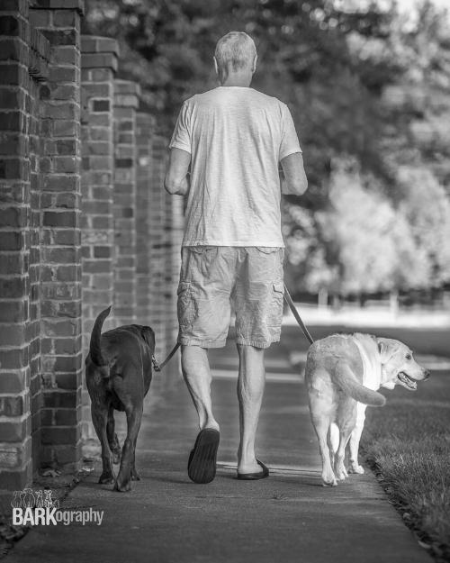 pets & people