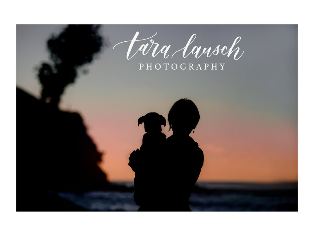 Tara Lausch Photography - 3.jpg