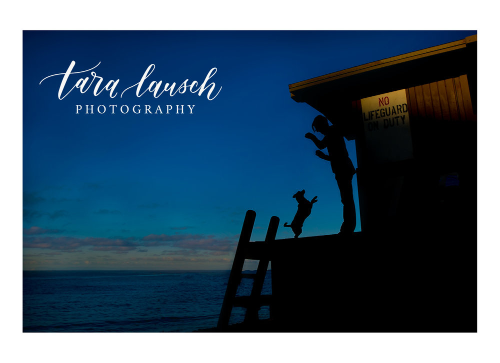 Tara Lausch Photography - 4.jpg