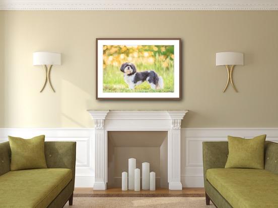 framed mat living room.JPG