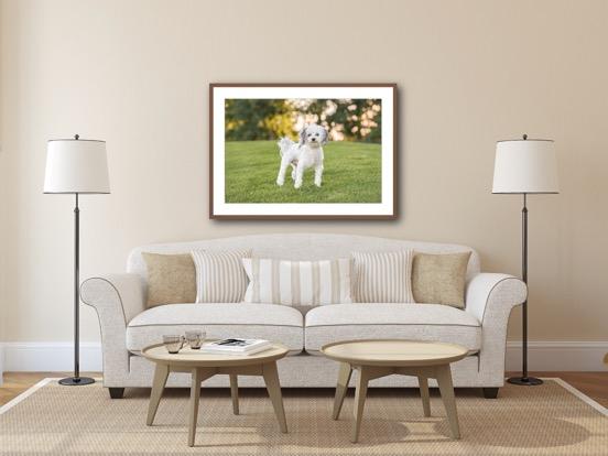 framed with mat living room 2.JPG
