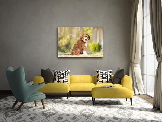 unframed living room 2.JPG